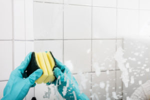 Home Cleaners San Jose